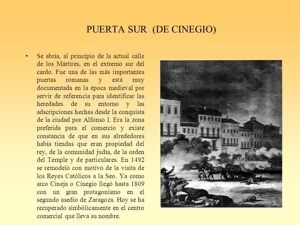 PUERTA SUR (DE CINEGIO)