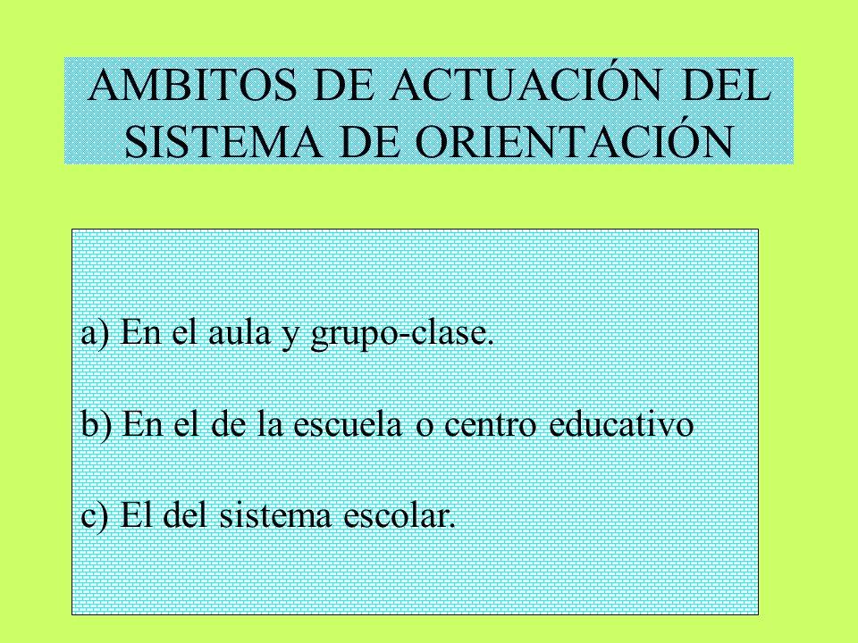 AMBITOS DE ACTUACIÓN DEL SISTEMA DE ORIENTACIÓN