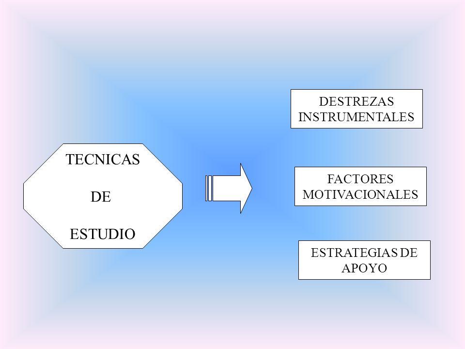TECNICAS DE ESTUDIO DESTREZAS INSTRUMENTALES FACTORES MOTIVACIONALES