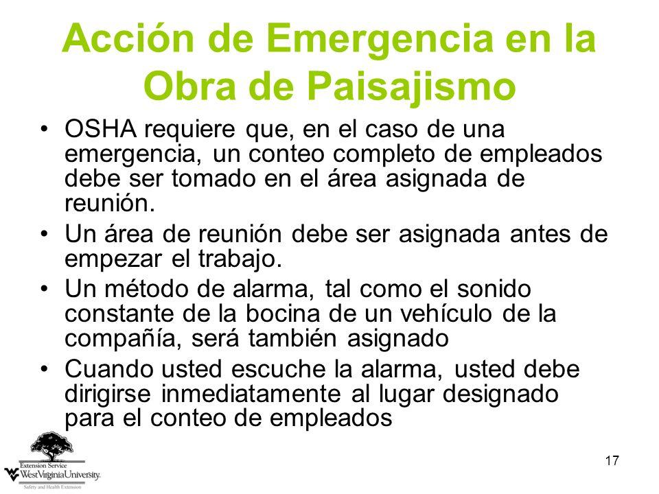Acción de Emergencia en la Obra de Paisajismo