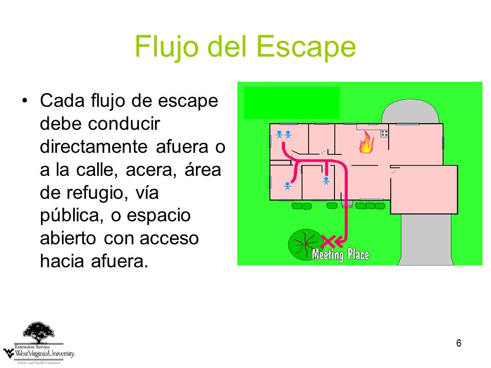 Flujo del Escape