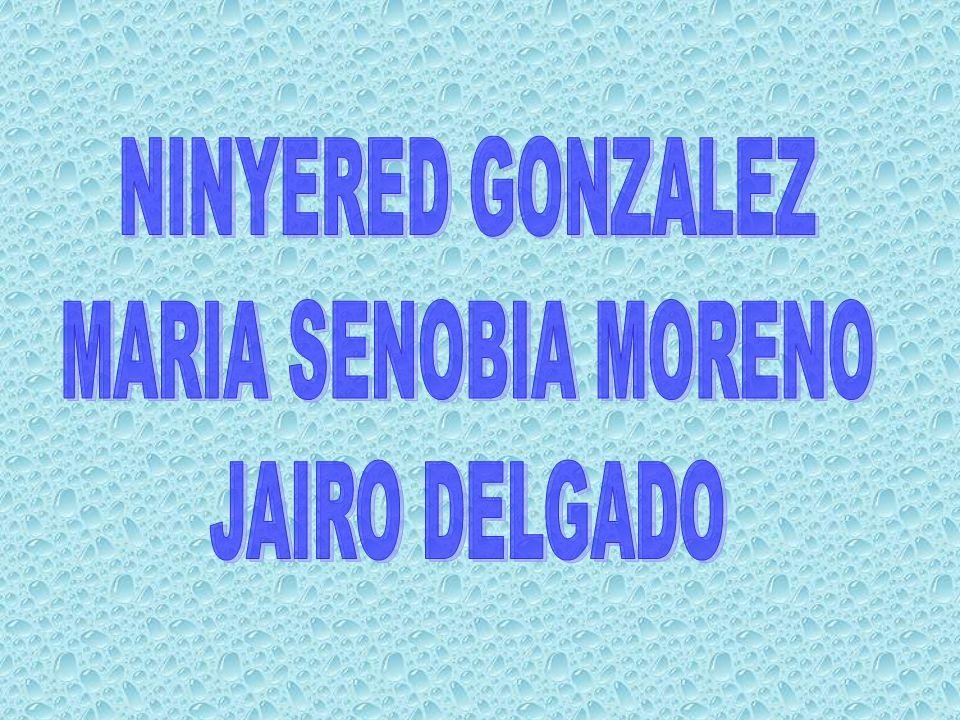 NINYERED GONZALEZ MARIA SENOBIA MORENO JAIRO DELGADO
