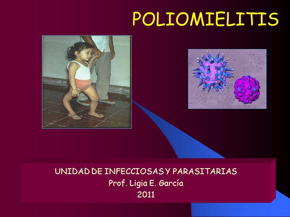 UNIDAD DE INFECCIOSAS Y PARASITARIAS Prof. Ligia E. García 2011