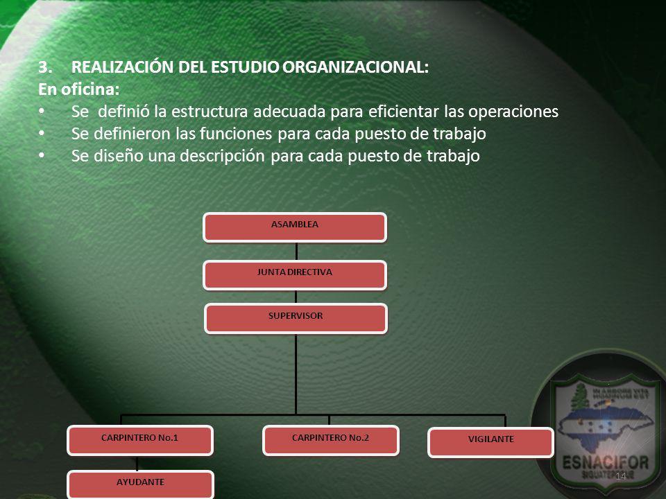 REALIZACIÓN DEL ESTUDIO ORGANIZACIONAL: En oficina:
