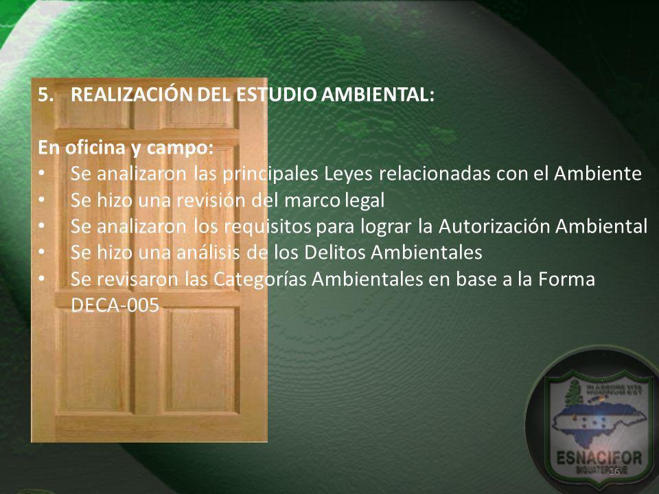 REALIZACIÓN DEL ESTUDIO AMBIENTAL: