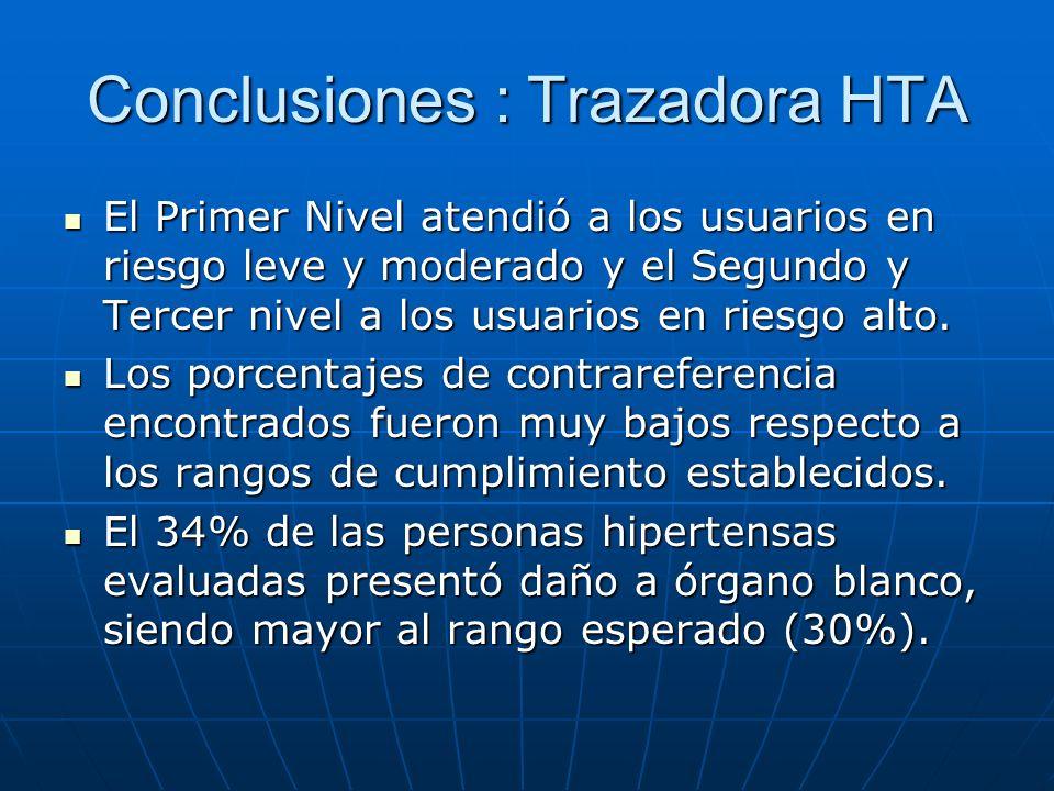 Conclusiones : Trazadora HTA