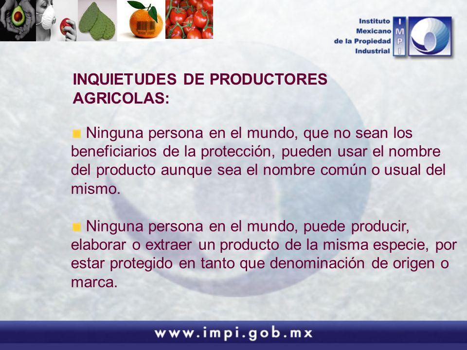 INQUIETUDES DE PRODUCTORES AGRICOLAS:
