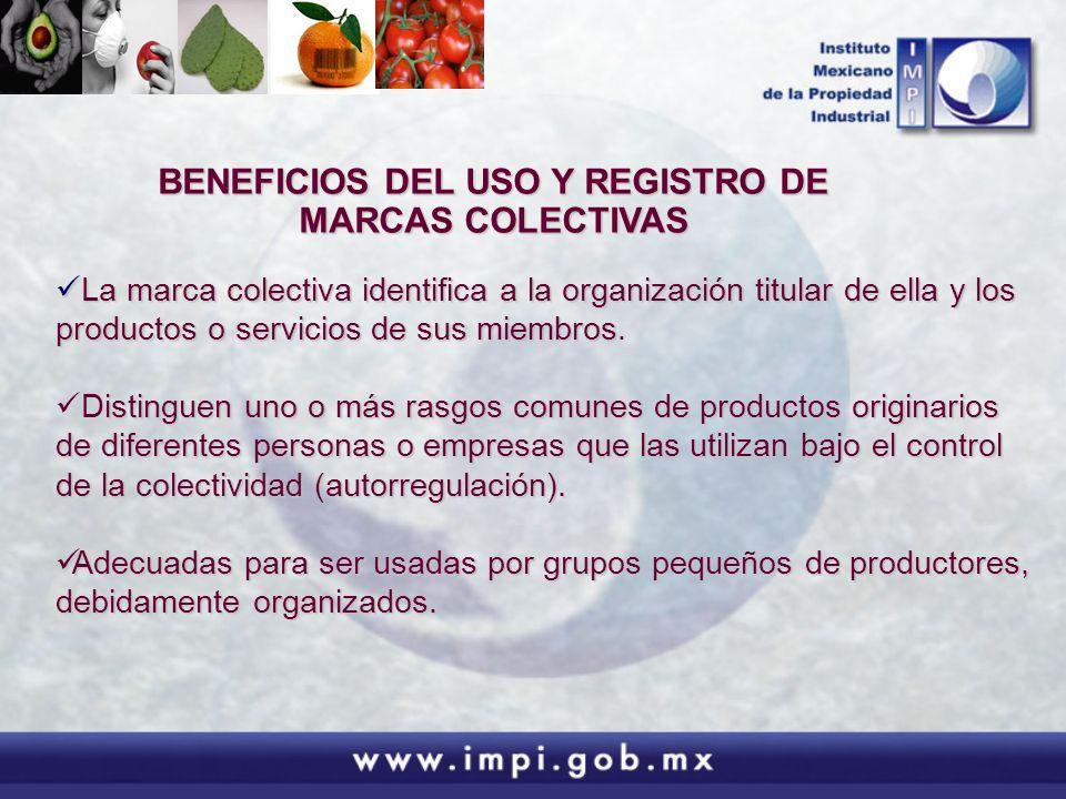 BENEFICIOS DEL USO Y REGISTRO DE MARCAS COLECTIVAS