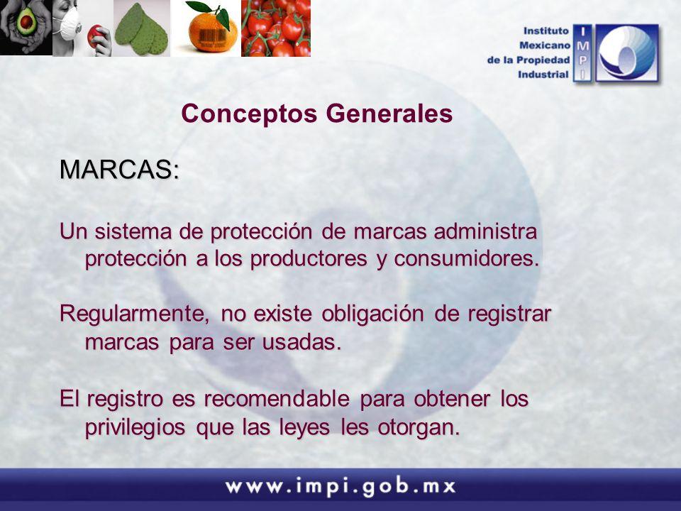 Conceptos Generales MARCAS: