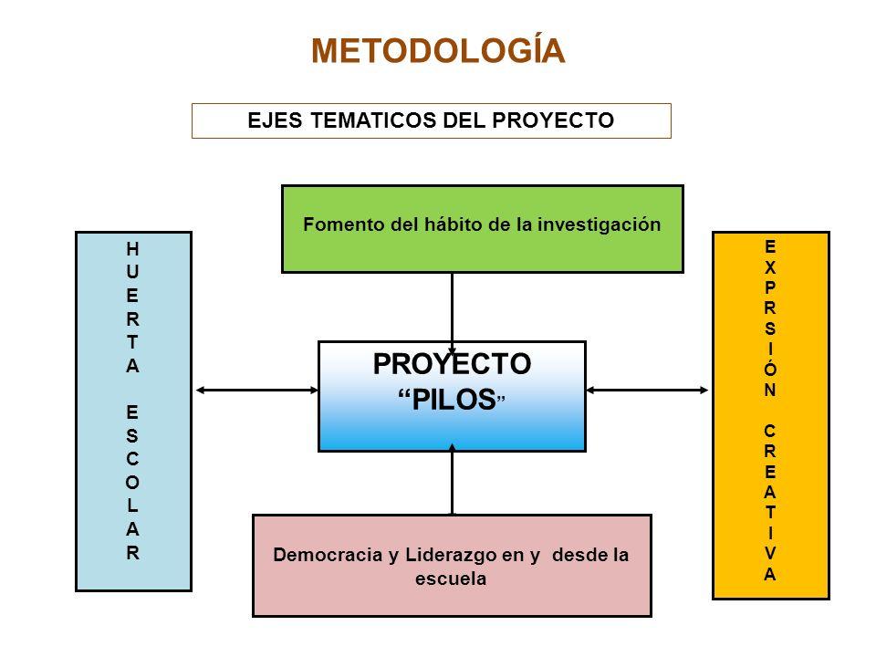 METODOLOGÍA PROYECTO PILOS EJES TEMATICOS DEL PROYECTO