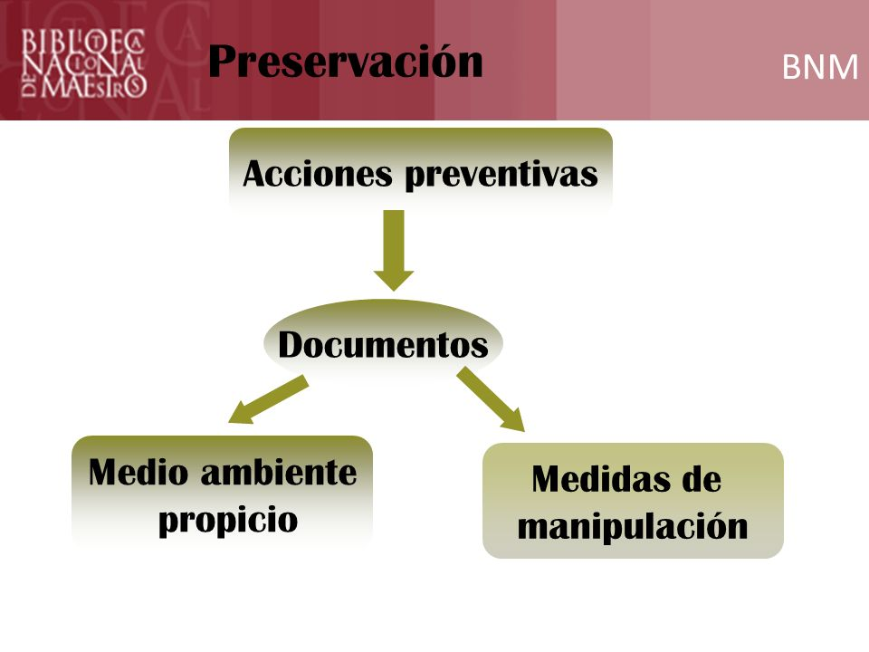Preservación BNM Acciones preventivas Documentos Medio ambiente