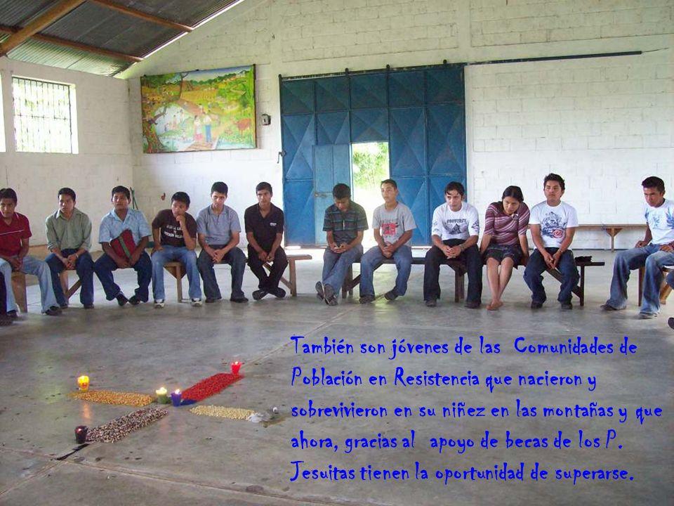 También son jóvenes de las Comunidades de Población en Resistencia que nacieron y sobrevivieron en su niñez en las montañas y que ahora, gracias al apoyo de becas de los P.
