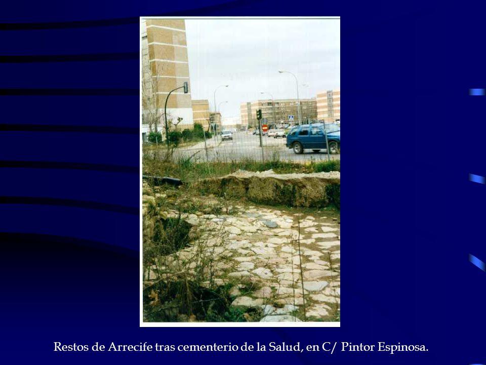 Restos de Arrecife tras cementerio de la Salud, en C/ Pintor Espinosa.