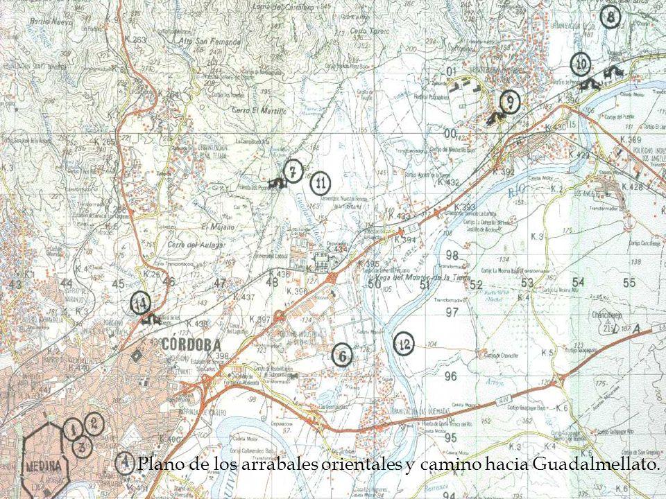 Plano de los arrabales orientales y camino hacia Guadalmellato.