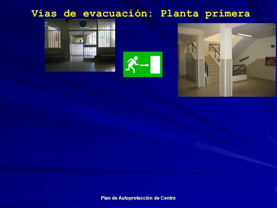 Vías de evacuación: Planta primera Plan de Autoprotección de Centro