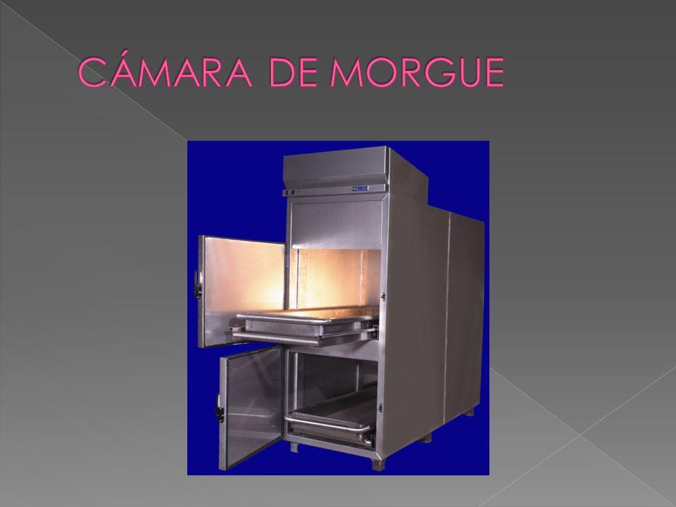 CÁMARA DE MORGUE