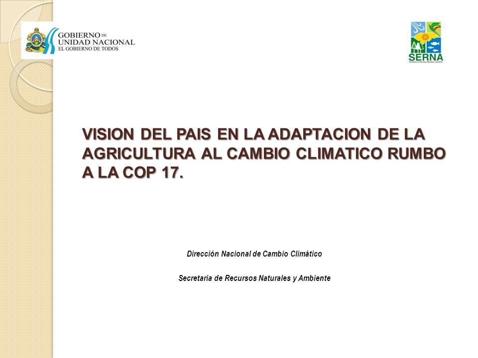VISION DEL PAIS EN LA ADAPTACION DE LA AGRICULTURA AL CAMBIO CLIMATICO RUMBO A LA COP 17.