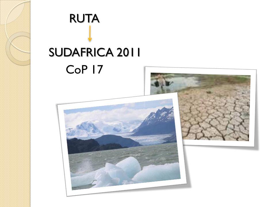 RUTA SUDAFRICA 2011 CoP 17
