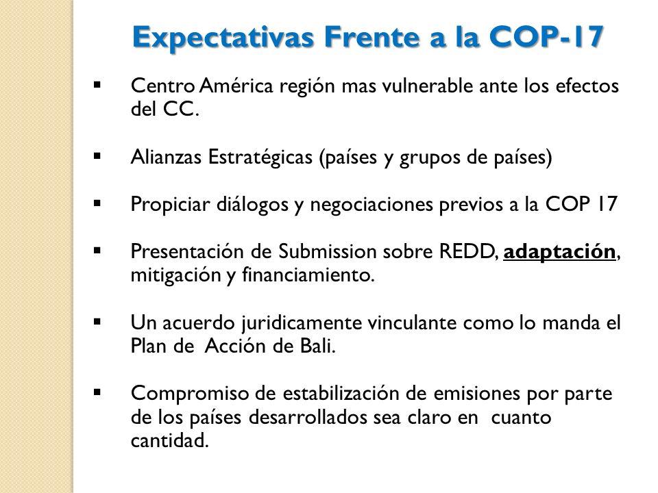 Expectativas Frente a la COP-17