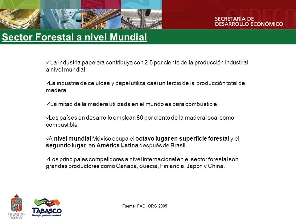Sector Forestal a nivel Mundial