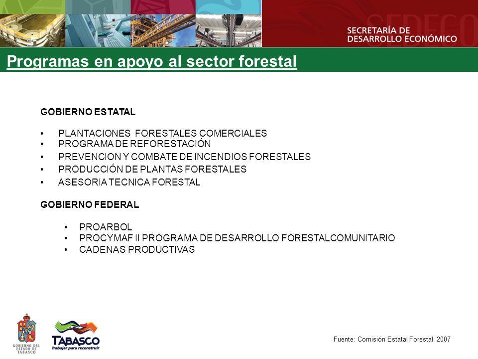 Programas en apoyo al sector forestal