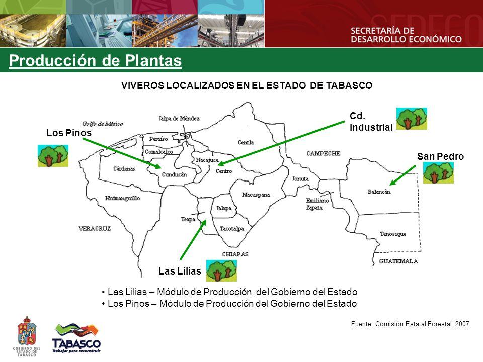 VIVEROS LOCALIZADOS EN EL ESTADO DE TABASCO