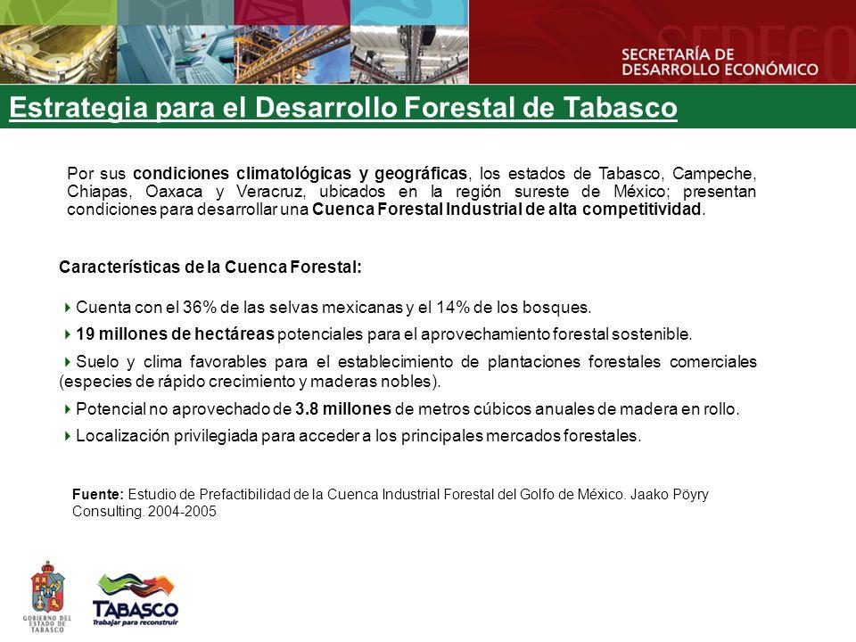 Estrategia para el Desarrollo Forestal de Tabasco