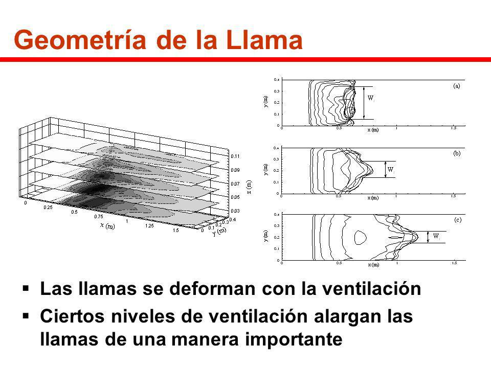 Geometría de la Llama Las llamas se deforman con la ventilación