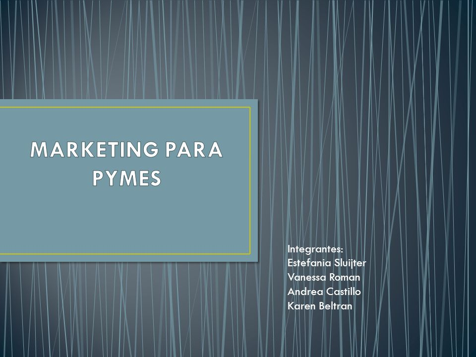 MARKETING PARA PYMES Integrantes: Estefania Sluijter Vanessa Roman