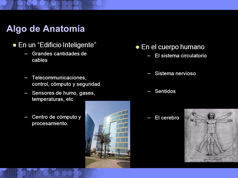 Algo de Anatomía En un Edificio Inteligente En el cuerpo humano