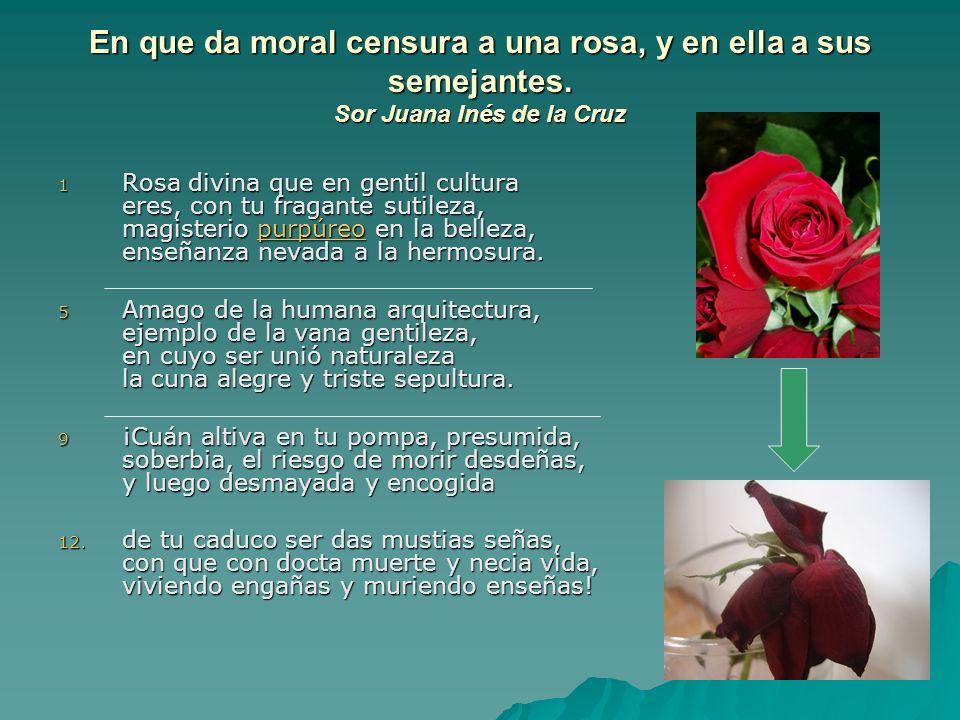 En que da moral censura a una rosa, y en ella a sus semejantes