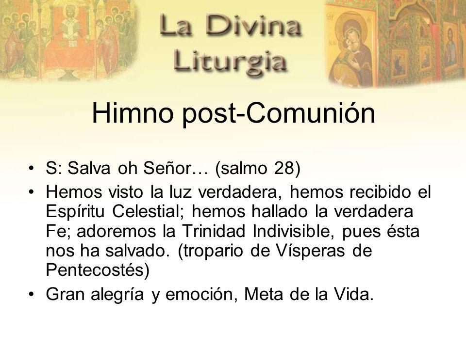 Himno post-Comunión S: Salva oh Señor… (salmo 28)