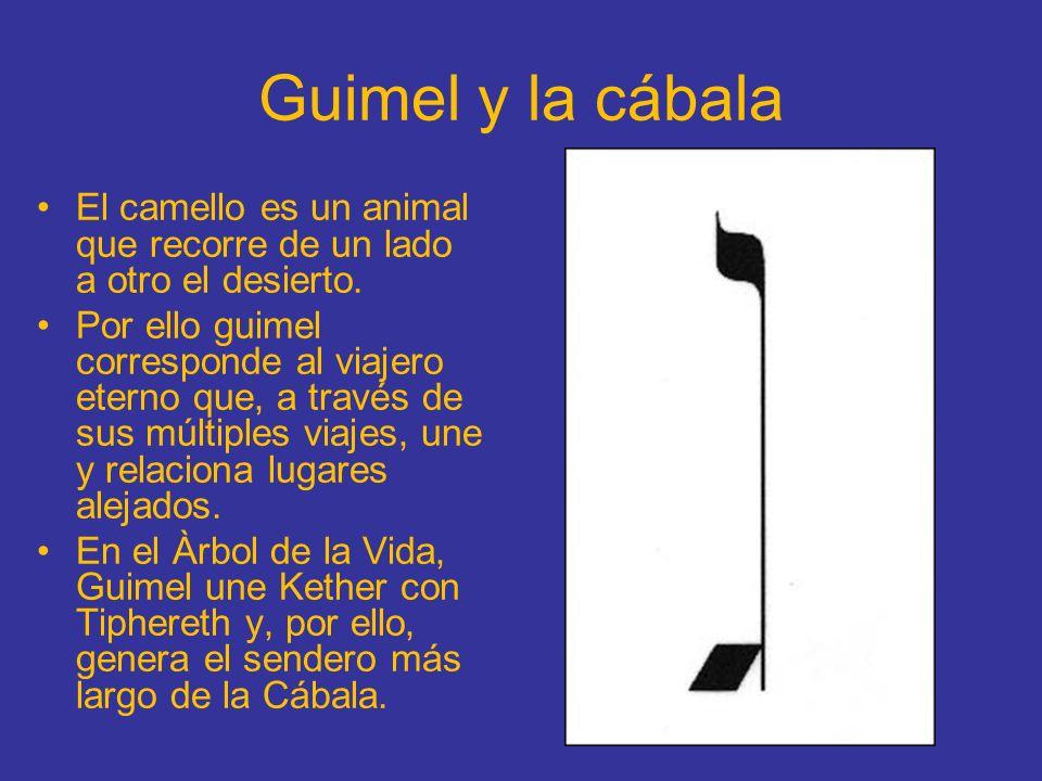 Guimel y la cábala El camello es un animal que recorre de un lado a otro el desierto.