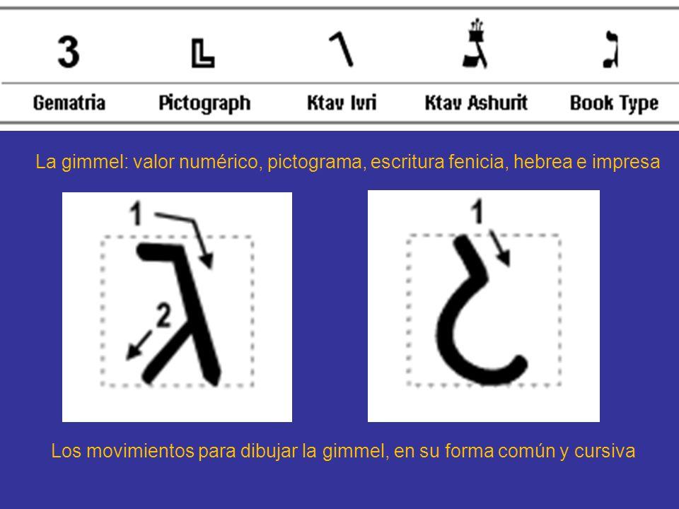 La gimmel: valor numérico, pictograma, escritura fenicia, hebrea e impresa
