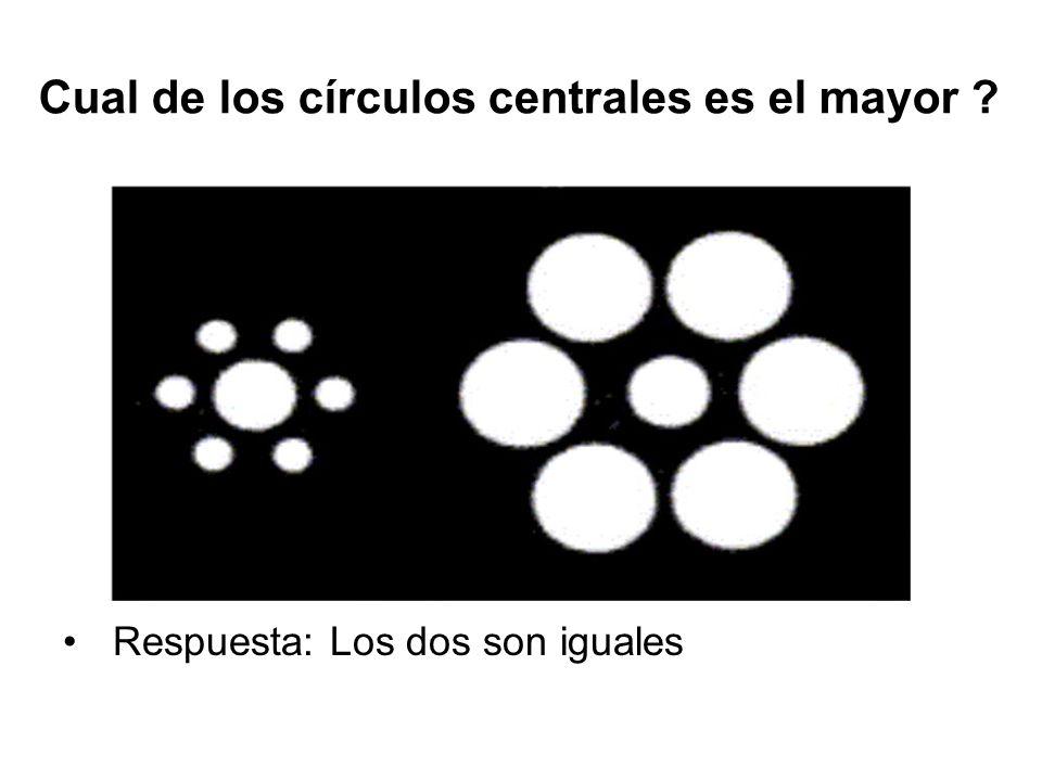 Cual de los círculos centrales es el mayor