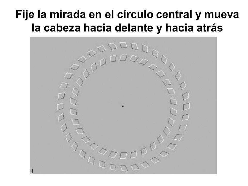 Fije la mirada en el círculo central y mueva la cabeza hacia delante y hacia atrás