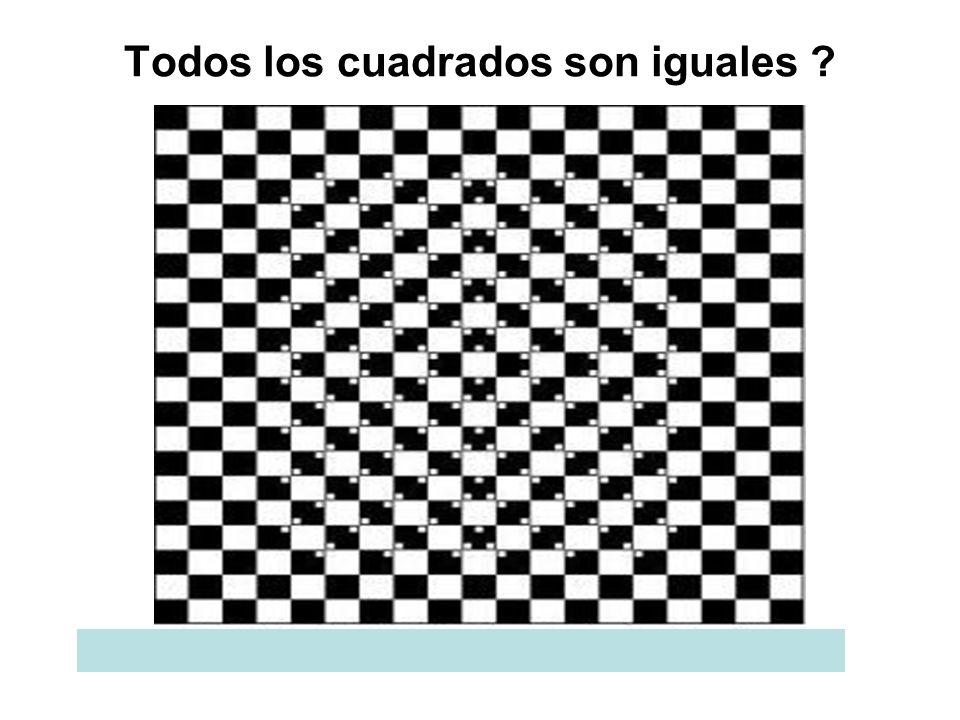 Todos los cuadrados son iguales