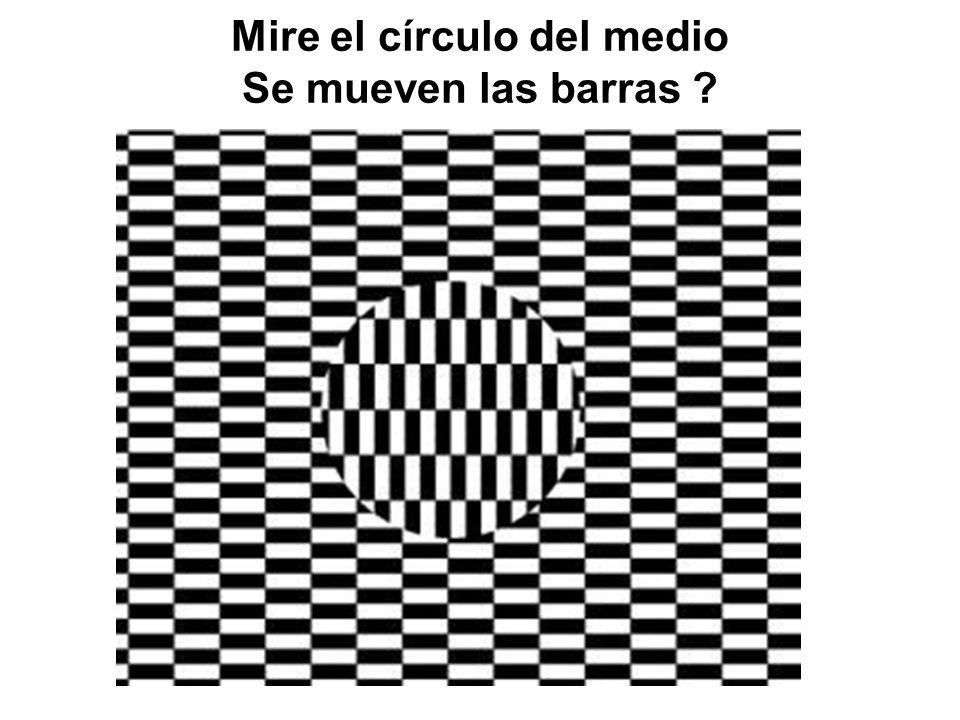 Mire el círculo del medio Se mueven las barras