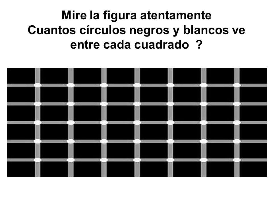 Mire la figura atentamente Cuantos círculos negros y blancos ve entre cada cuadrado