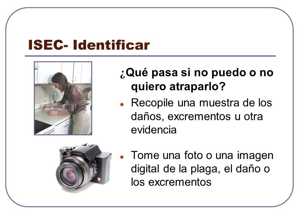 ISEC- Identificar ¿Qué pasa si no puedo o no quiero atraparlo