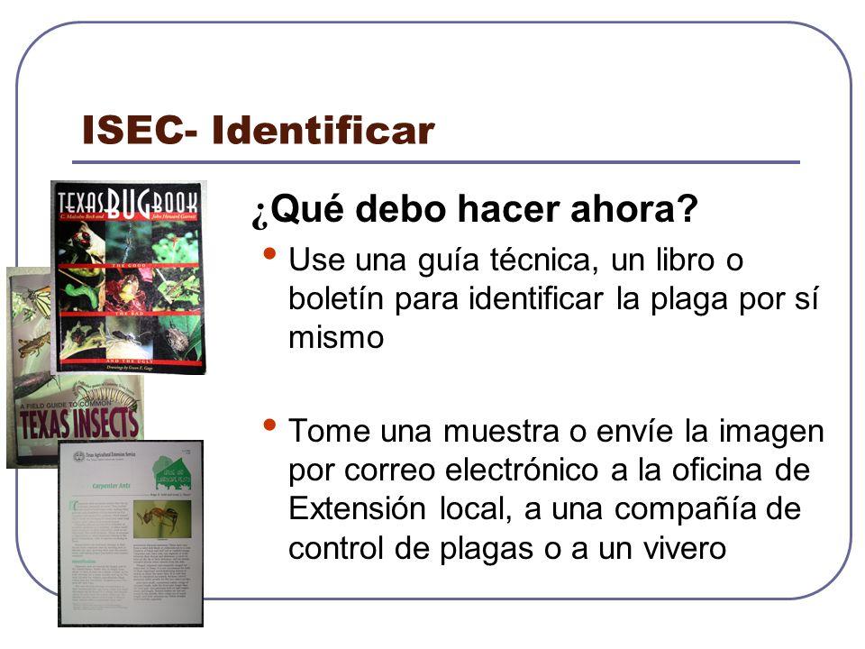 ISEC- Identificar ¿Qué debo hacer ahora