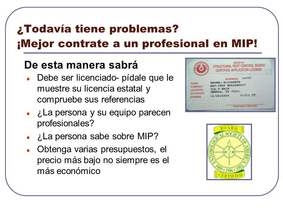 ¿Todavía tiene problemas ¡Mejor contrate a un profesional en MIP!