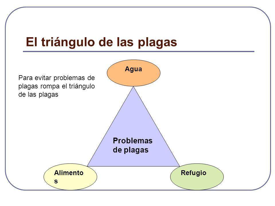 El triángulo de las plagas