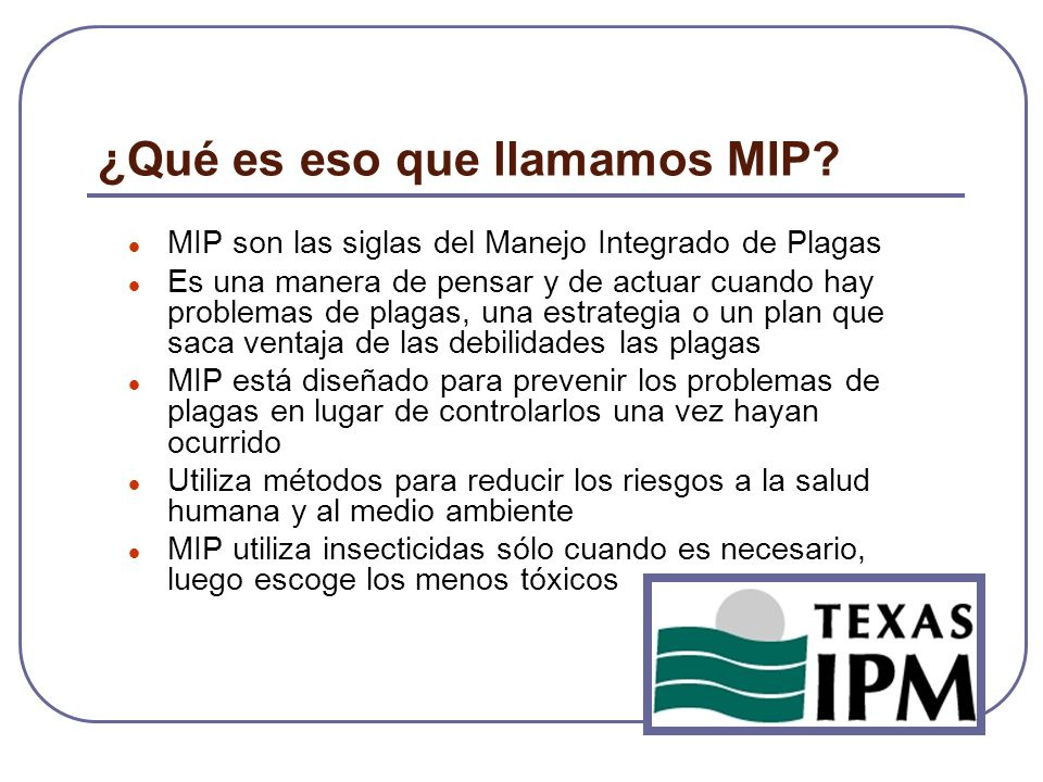 ¿Qué es eso que llamamos MIP