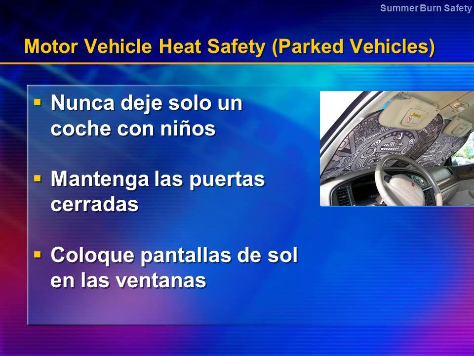 Motor Vehicle Heat Safety (Parked Vehicles)