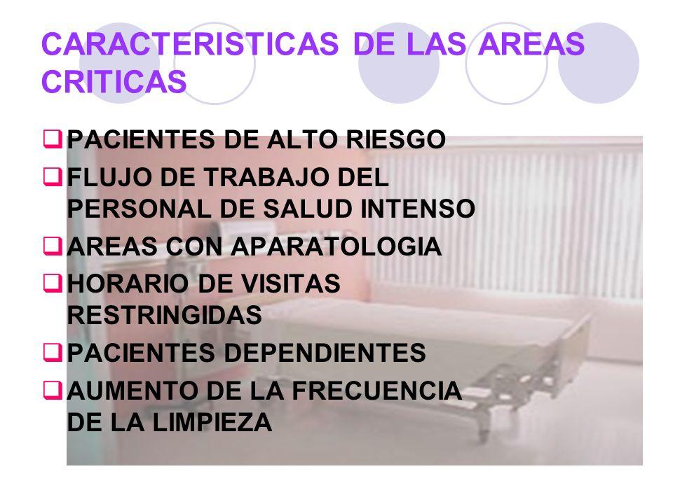 CARACTERISTICAS DE LAS AREAS CRITICAS
