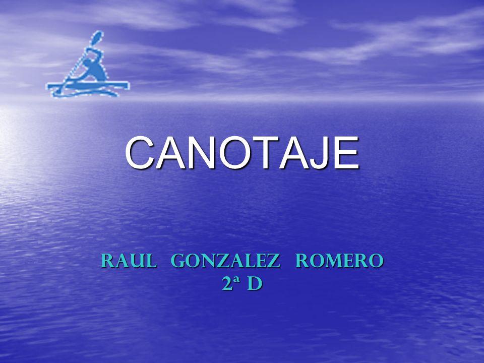 RAUL GONZALEZ ROMERO 2ª D