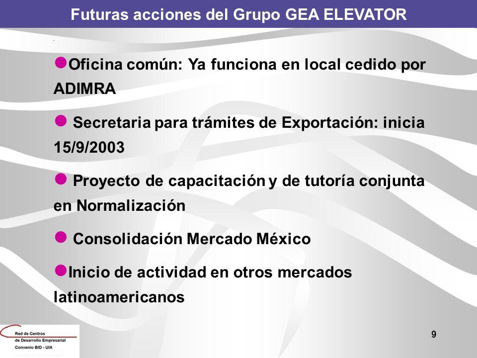 Futuras acciones del Grupo GEA ELEVATOR