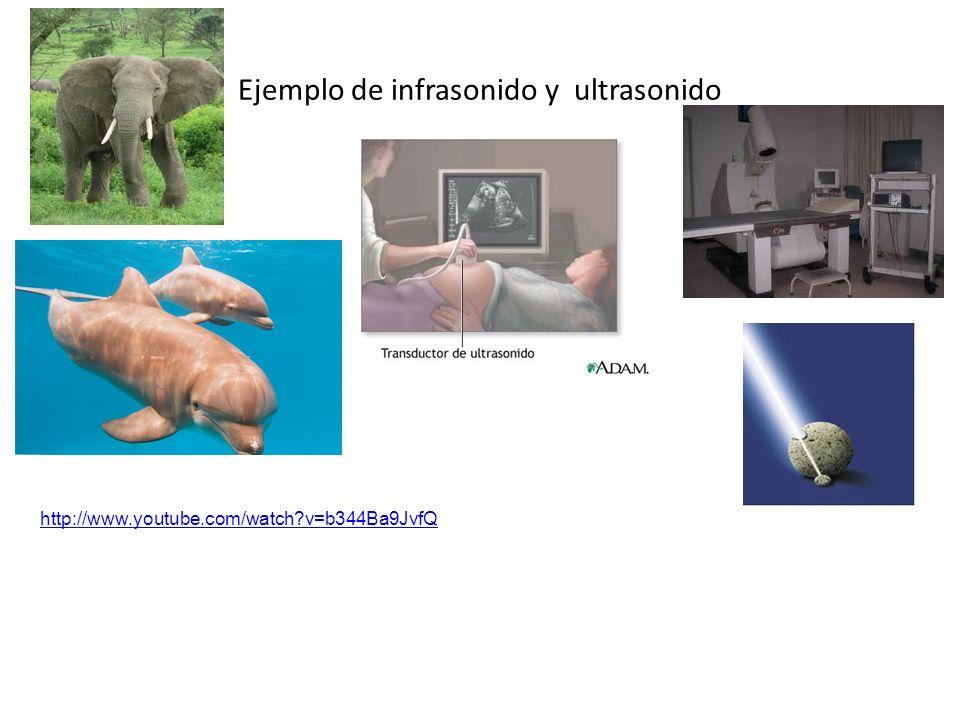 Ejemplo de infrasonido y ultrasonido