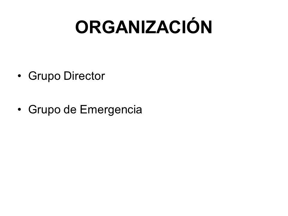 ORGANIZACIÓN Grupo Director Grupo de Emergencia